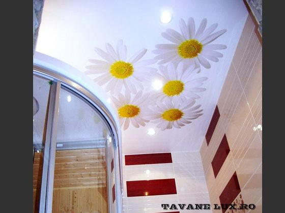 Tavan cu imagine decorat cu Spot-uri