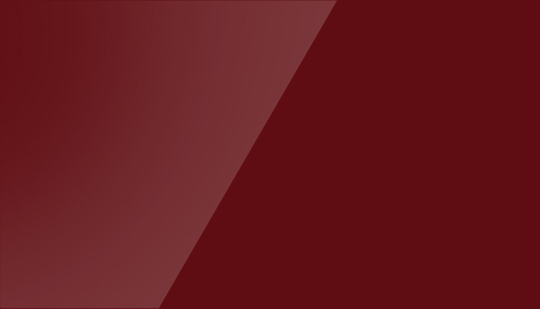 Bordeaux ambiance 15027