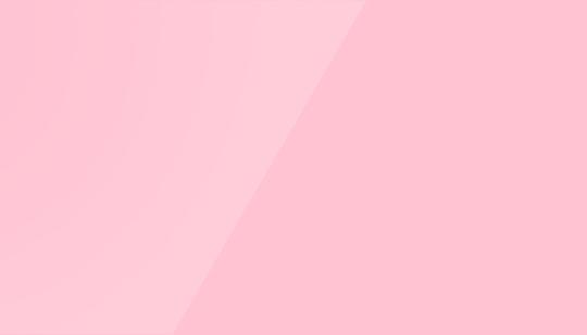 Rose camelia 15045